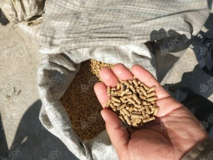Why Do You Need To Make Feed Pellets For Your Poultry and Livestock?