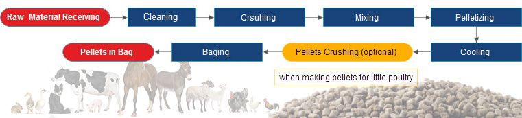 animal feed pellet production process