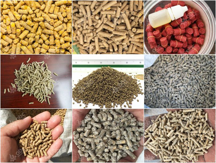 many kinds of feed pellets