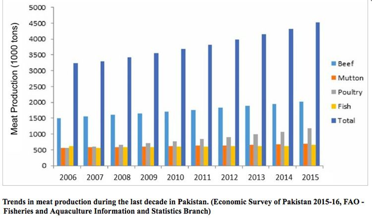 Pakistan meat production
