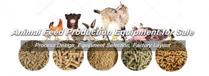 1TPH Animal Feed Production Equipment Exported to United States